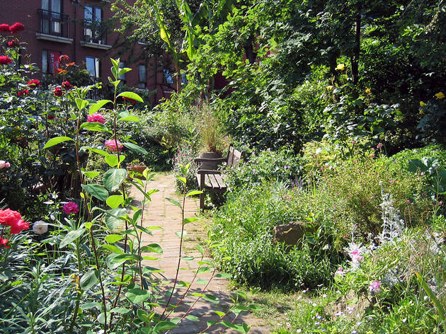 Go Green Spaces And Live Longer
